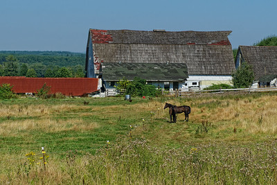 This barn is on the Wynoochee Rd