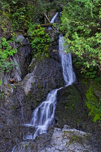 A waterfall I found on the Wynoochee Rd 7 miles past the campground junction.