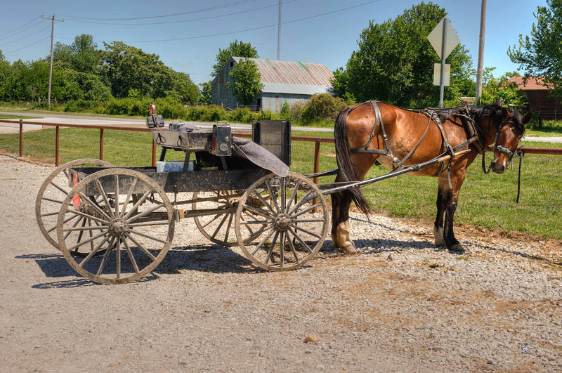 Amish buggy outside a Grocery Store in Seymore, MO