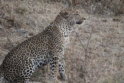 2012 07 Southern Africa Byler - 008