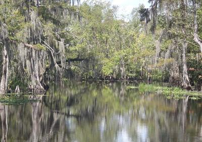 2012 09 05 Louisiana