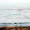 2012-09-23 Cayucos Beach ocean view