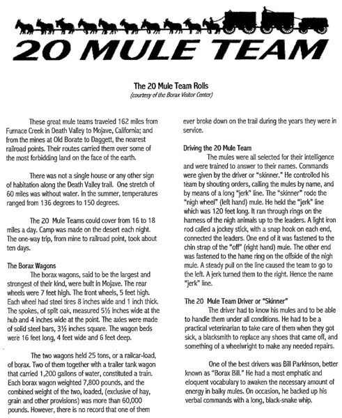 20 Mule Team info p1