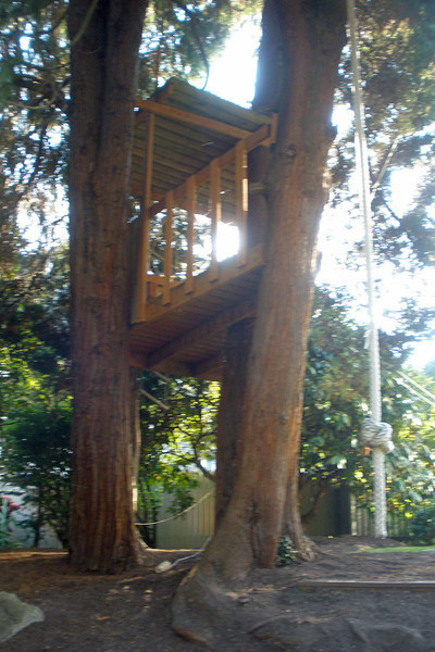 Executive tree house in neighborhood