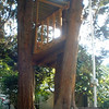 Executive tree house in neighborhood