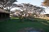 Ngorongoro Lion's Paw Tented Camp, Central Serengeti