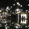 Reflection,  the Munsterplatz Xmas Market