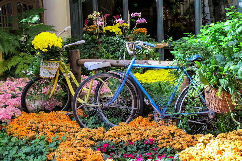 Bikes at the Bellagio Conservatory