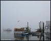 Public landing<br /> <br /> Friendship Harbor<br /> Friendship, Maine