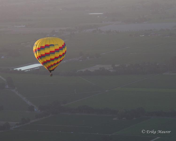Aloft in Napa Valley ...