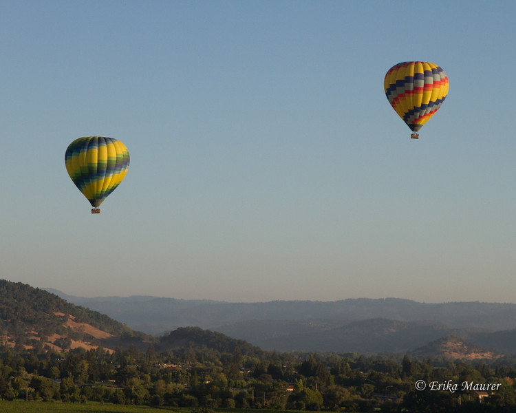 Napa valley morning