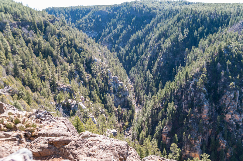 Oak Creek Canyon from an overlook north of the canyon.