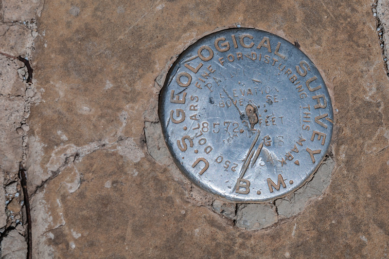 US Geosurvey medallion