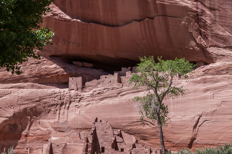 Ledge Ruin up Canyon del Muerto, Canyon de Chelly NM.