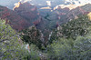 Bright Angel Trail and the Half way down oasis of Indian Gardens from the South Rim.