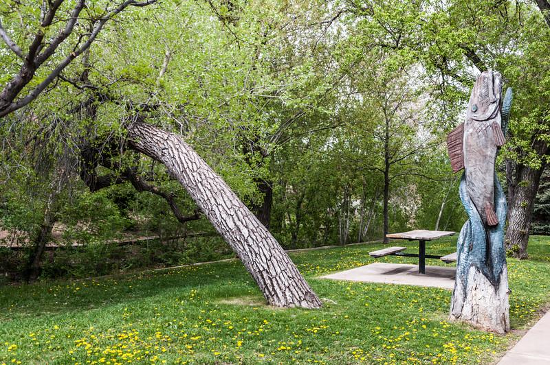 Park by the Santa Fe River. Fish carving.