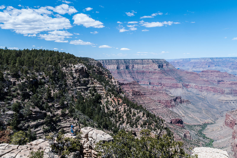 Man on lower rim rock, at Powell Monument point.