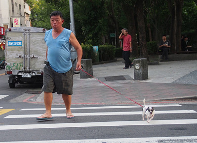 Man, Dog.