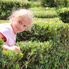 Maggie navigates the hedge maze