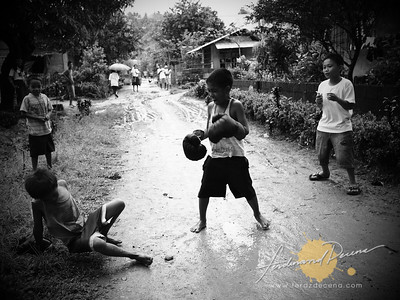 Young Boxers
