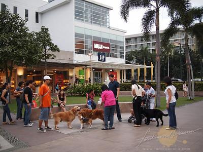 Bonifacio High Street