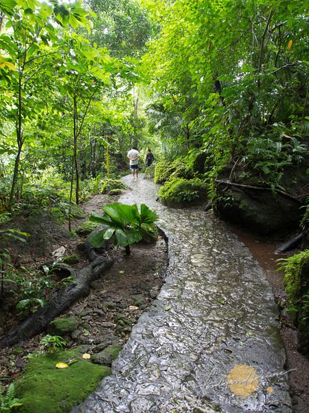 Pathway to the Lake Balanan Pool area