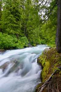 White River Falls above Lake Wenatchee