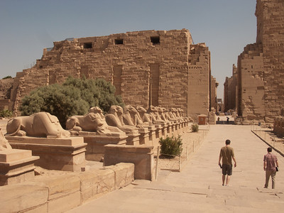 The row of sphinx......goes for two miles between the Temple of Luxor and the Temple of Karnack!