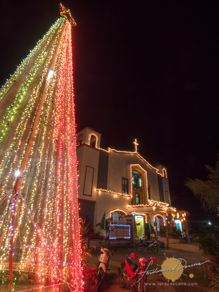 A Christmas tree in the parish grounds