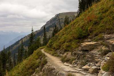 Further up the Highline Trail, in open subalpine meadows.