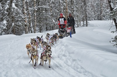 Aliy Zirkle Bib #14 in the 2012 Iditarod - finished 2nd.