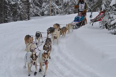 Iditarod March 3, 2012