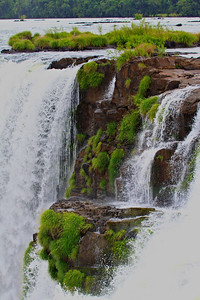 Vegetation is beautiful with the waterfall