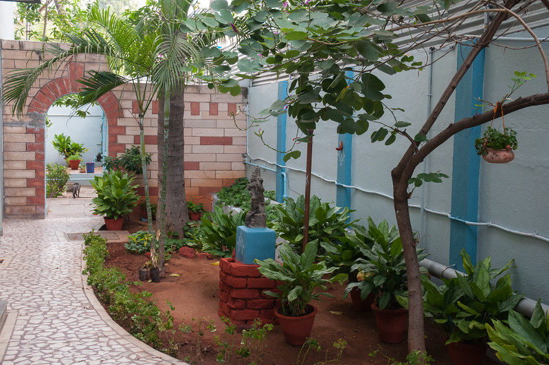 The side garden at Aravind Guest House.