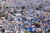 Jodhpur, the Blue City.