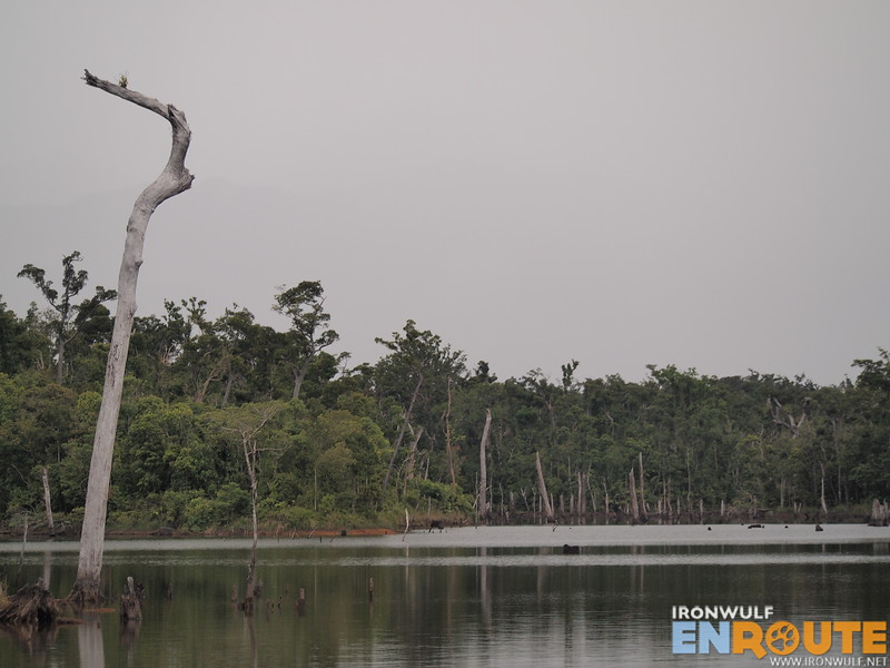 The Dicatian Lake is a crocodile sanctuary