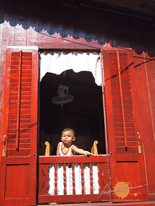 Malacca Boy Window Peek