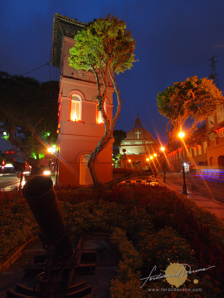 A canon and Clock Tower by the Tree
