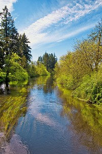 Black River south of Olympia