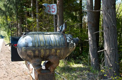 Whimsical pig mailbox