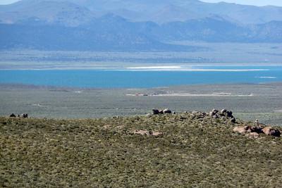 Mono Basin Mono Craters June 2012