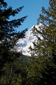 A peek-a-poo view of the mountain.