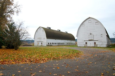 The twin barns at Nisqually