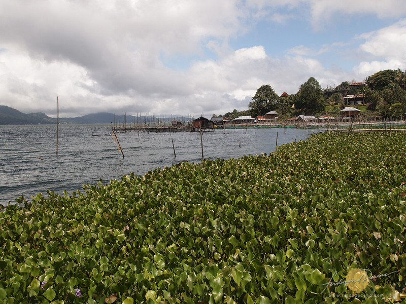 Lake Tondano, the largest lake in North Sulawesi