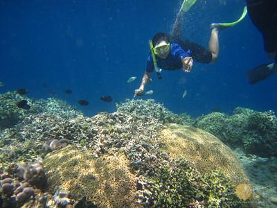 Bunaken National Marine Park Snorkeling