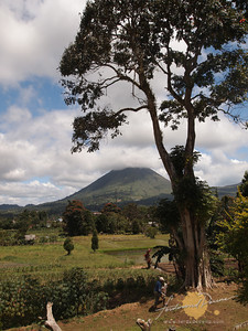 Mt Lokon, Tomohon