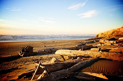 The Beach at Ocean Shores