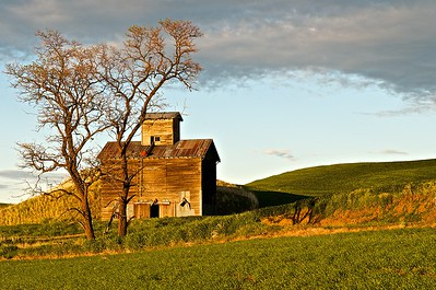 Grain Elevator in the Palouse