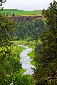 Rolling wheat fields and a river in the Palouse