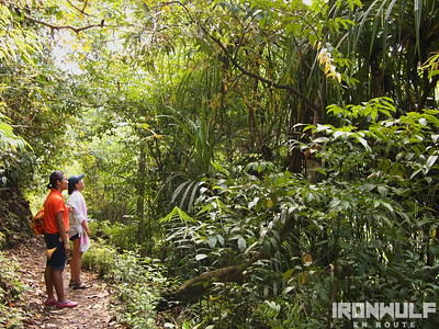 Hike to Bugtong Bato Falls